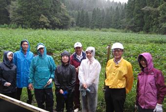 阿蘇波野 大豆畑